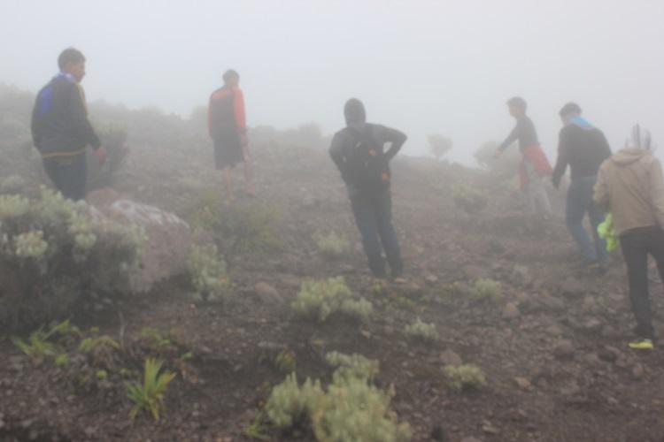 Suasana Kabut di Puncak Marapi