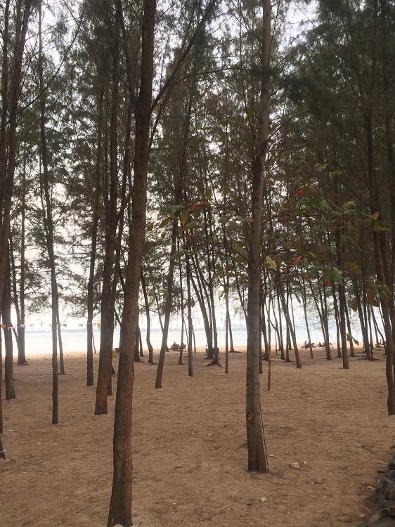 Pantai Occarina Batam