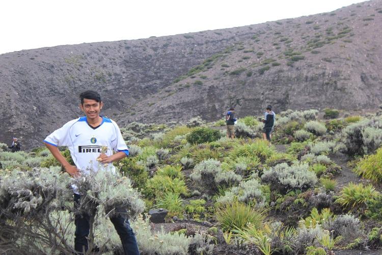 Taman Eidelweiss Gunung Marapi